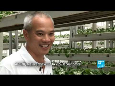 Singapore's Vertical Farms - #AsiaLive