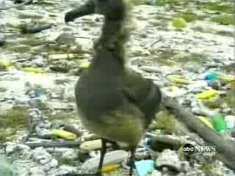 Pacific Garbage Dump- Nightline