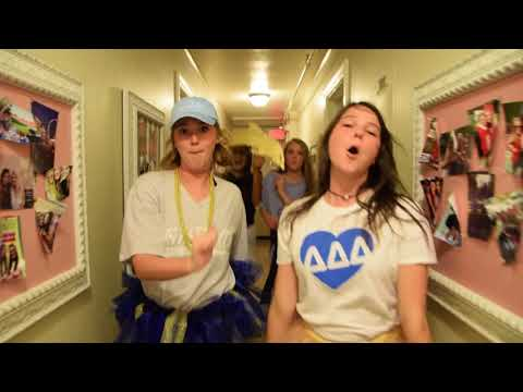 University of Arkansas Tri Delta Lip Dub 2017