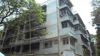 Project video of Sachdev Complex