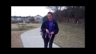 How To Teach Your Dog Loose-leash Walking