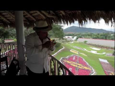 Arturo Fuente factory and fields