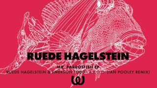 Ruede Hagelstein & Emerson Todd - A.R.G.O. (Ian Pooley Remix)