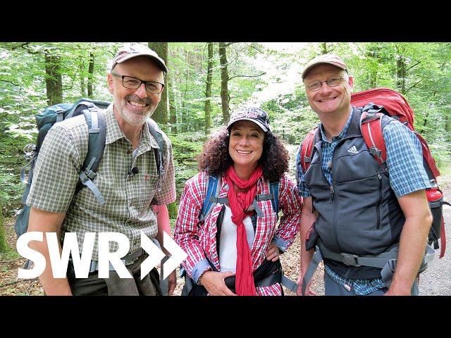 Mit Sven Plöger & Barbara Wussow im Universitätsforst Sailershausen | SWR Der mit dem Wald spricht