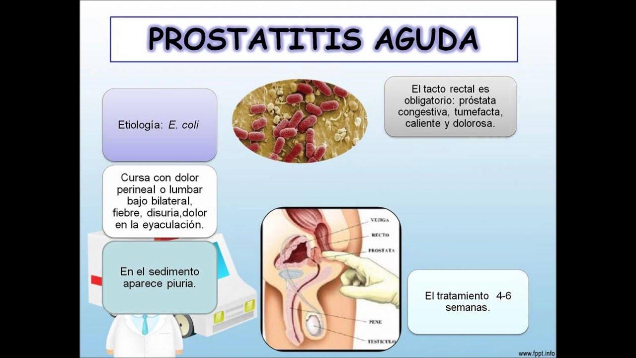 video de cómo curar la prostatitis de Klebsiella