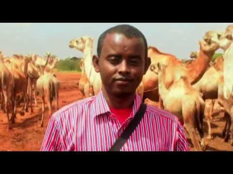 Barnaamijka Socdaalka Somali News TAARIIKHDII BUUHOODLE by Haradigeed