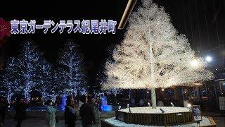 TOKYO【Christmas Lights】Tokyo Garden Terrace Kioicho 2019.東京ガーデンテラス紀尾井町 #4k
