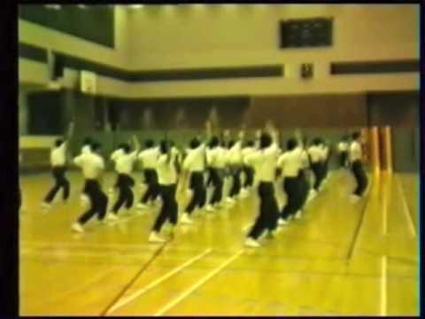 劉莉莉國際鷹爪國術總會 - Grandmaster Lily Lau at the Hong Kong University Part 2.mov
