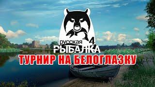 Попытка поймать трофейную белоглазку на Волхове ∘ Русская Рыбалка 4