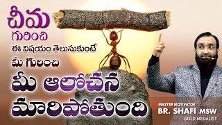 Ant Story An Excellent Motivational Speech
