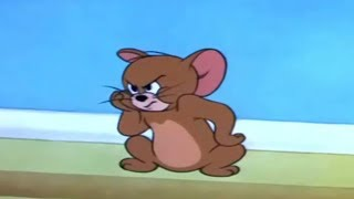 Tom and Jerry - Nit Witty Kitty - [ T & J ]