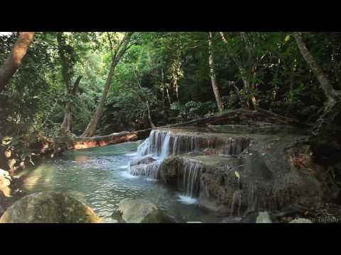 Лесной водопад для