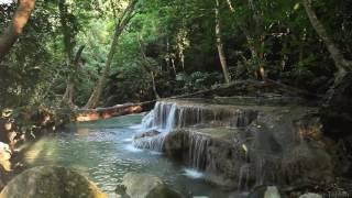 Лесной водопад для телевизора и монитора (HD)