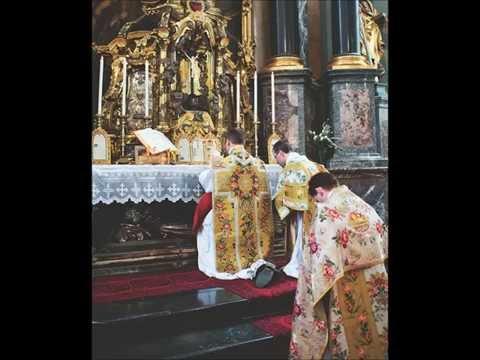 Return of Reverence ~ Fr Ripperger