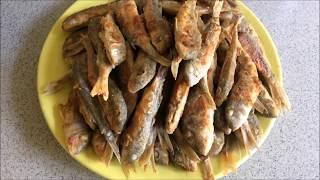 видео Черноморская барабулька (обыкновенная султанка): описание, фото, рыбалка
