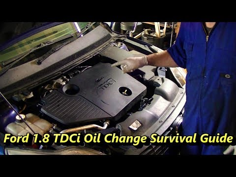 how to reset ford focus oil change