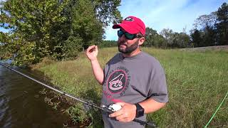 Basic Bank Fishing Rods and Reels