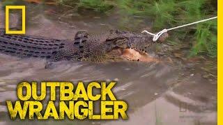 Wild Croc Catch | Outback Wrangler