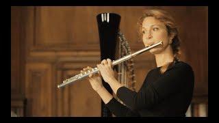L'Émotion musicale vol.1 - Mozart l'éternel (english subtitles)