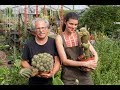 Ep 032 Cacti Care Tips Field Trip Plant One On Me mp3