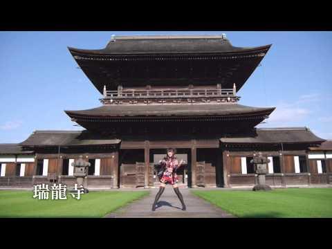 [北陸新幹線富山県PR]【瑞龍寺】千本桜/ぶらっくすわん[とやまde踊ってみた]