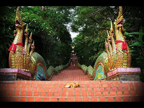Doi Suthep Incredible Wat Phra That  Temple -  Chiang Mai  Thailand