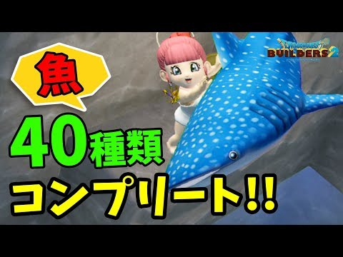 【DQB2】全40種類の魚の釣り場も紹介!一晩で全ての魚を釣りに行ってみた【ドラゴンクエストビルダーズ2 DLC第2弾「水族館パック」】
