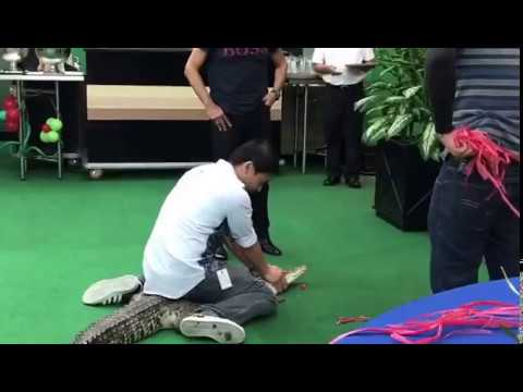 SULTAN OF BRUNEI helps CROC BOY DIONY to cut loose 7 footer croc