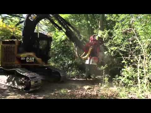 Workshift: Life as a Wisconsin logger