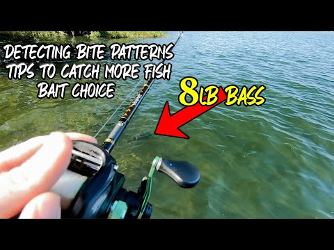 How To Catch More Bass In Clear Water