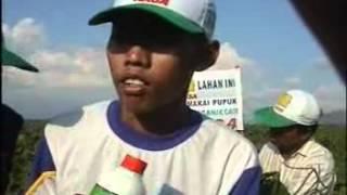 Budidaya Kacang Hijau Organik ala Ahmad Sodiq di Jember - Jatim