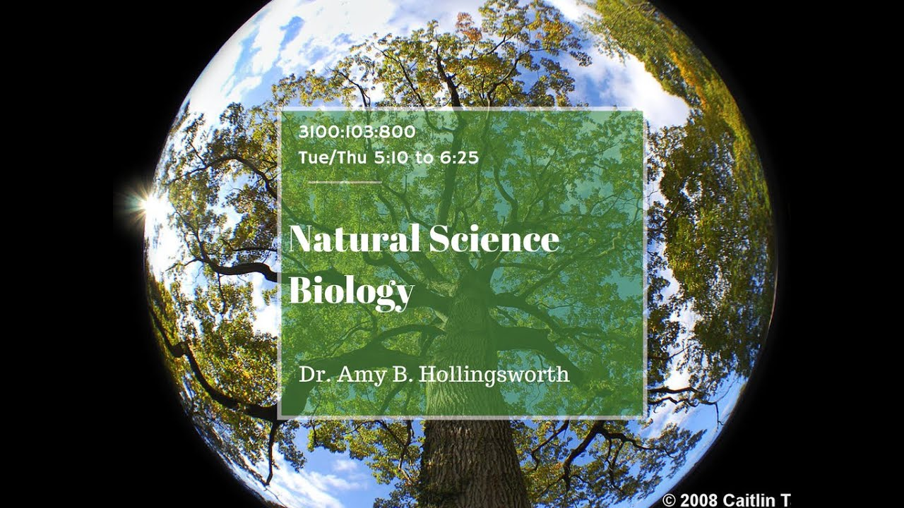 Natural science - the science of nature 80