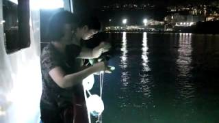 西貢墨魚王   hk香港西貢夜釣墨魚團   whatsapp 5432 4020   www wakeboating com