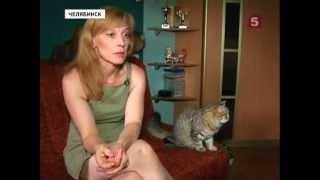 В Челябинске кошку делят в суде