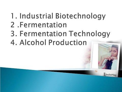 Industrial Biotechnology, Fermentation, Fermentation Technology, Alcohol Production
