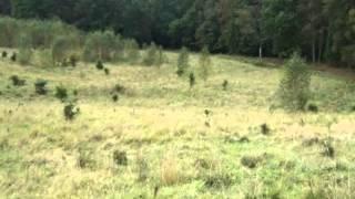 Małszewo gm. Jedwabno działka rolna 3500m2
