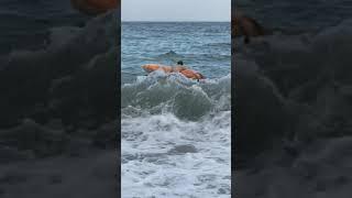 Плавающая жопа в Партенит 03.09.2018