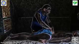Курсы массажа Запорожье Мир массажа