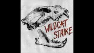 Lloyd Braun - Wildcat Strike