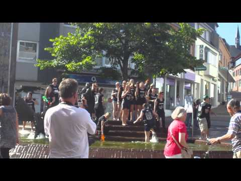 Party am Elsabrunnen - Abi 2011 - Freiherr-vom-Steim Gymnasium Kleve