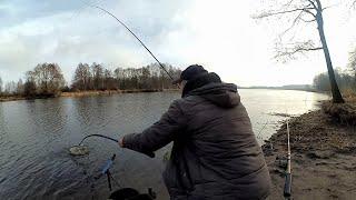 ФИДЕРНАЯ ЛОВЛЯ 2021 Прикормка весной на фидер Рыбалка на РЕКЕ