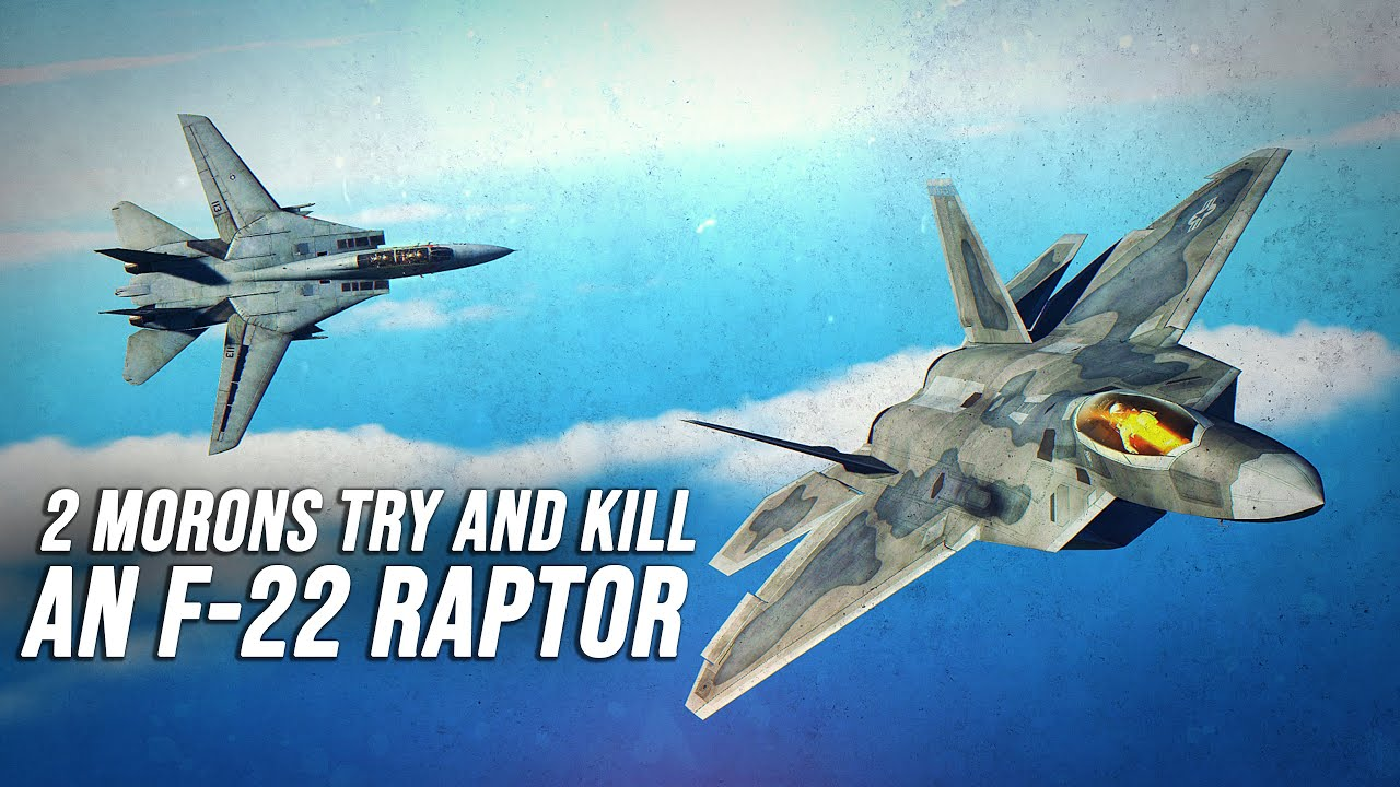 2 Morons Try and Take on an F-22 Raptor | Digital Combat Simulator | DCS | Dogfight |
