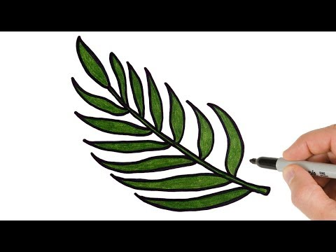 How To Draw Palm Tree Leaf Easy Stayhome And Draw Withme Youtube