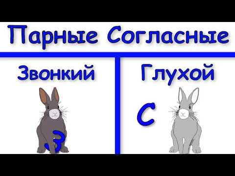 Начальная школа. 1 класс. Парные согласные. Profi-Teacher.ru
