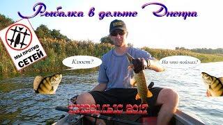 Рыбалка в дельте Днепра. Кизомыс, сентябрь 2017 год. ШОК! Щуки атакуют воблер!