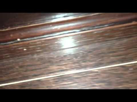 Pre Engineered Hardwood Delamination Youtube