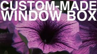 Custom-made Window Box | Day 113 | The Garden Home Challenge With P. Allen Smith