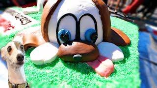 2018 YEAR OF THE DOG CAKE AMAZING GIANT CAKE