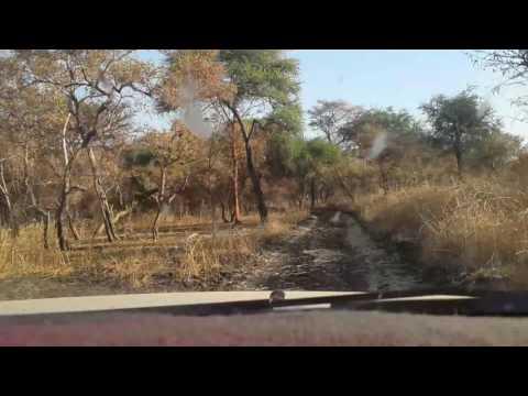 Dinder national park Sudan