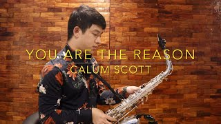 Download Lagu You Are The Reason - Calum Scott (Saxophone Cover) Mp3